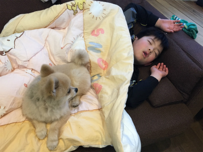 Maiko_ippon_087